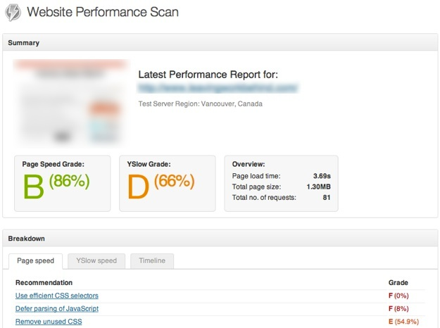 Website Performance Scan