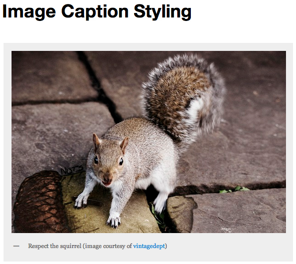 Image Caption Styling