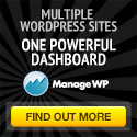 Manage WP image