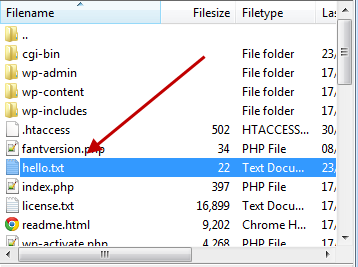 the ftp program with the hello file uploaded
