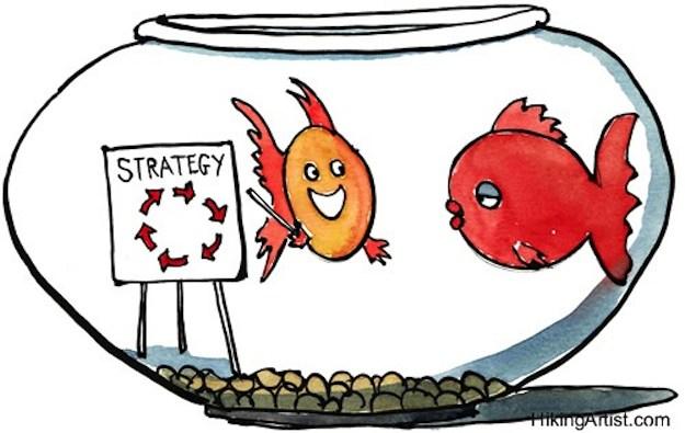 SEO/Social Strategy