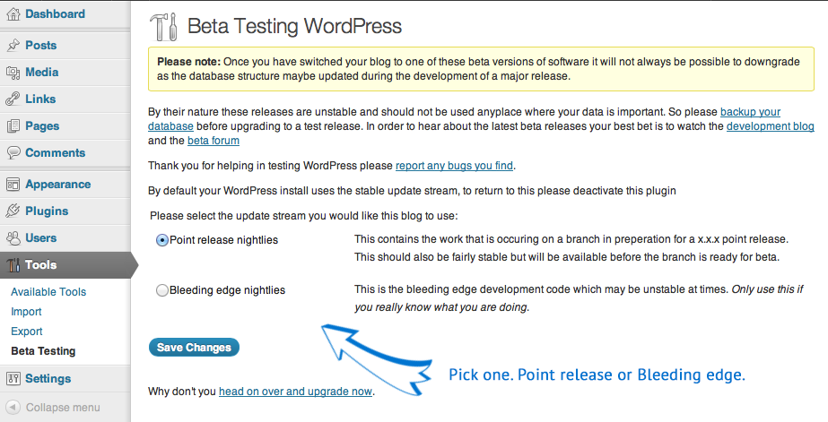 WordPress Beta Testing - 2 update options