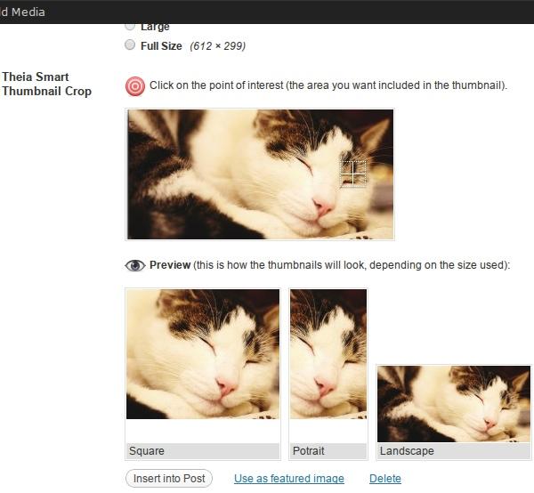 Theia Smart Thumbnails - Premium WordPress Plugin
