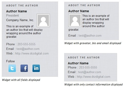 About the Author Advanced WordPress plugin