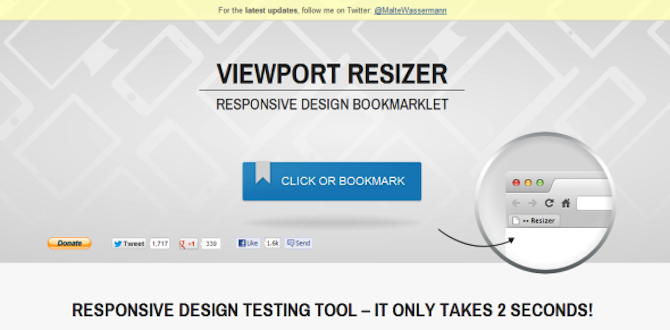 Viewport Resizer
