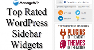 30 Top Rated WordPress Sidebar Widgets