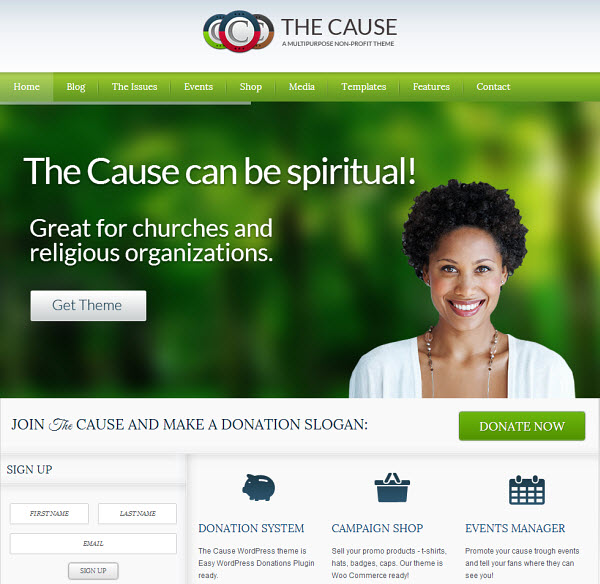 The Cause WordPress Theme