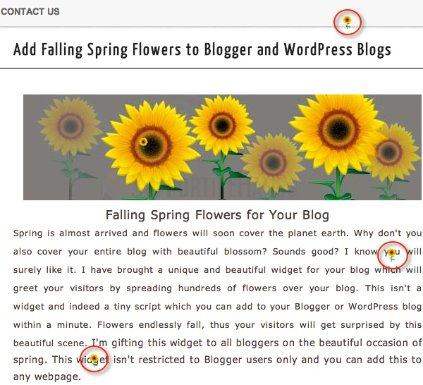 Add Falling Spring Flowers to WordPress