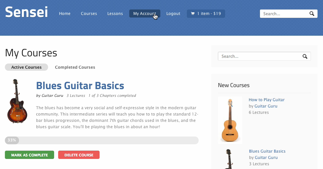 sensei-guitar-courses-sample