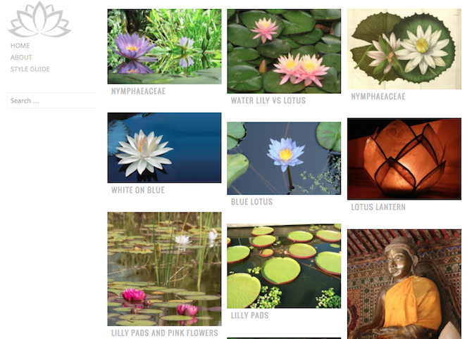 Waterlily Theme