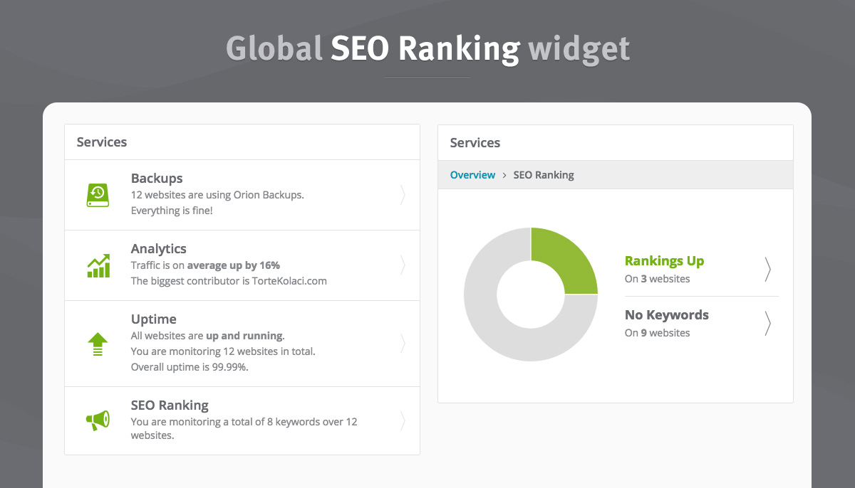 seo-ranking-widget
