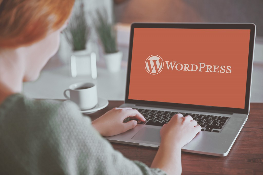 wordpress usage