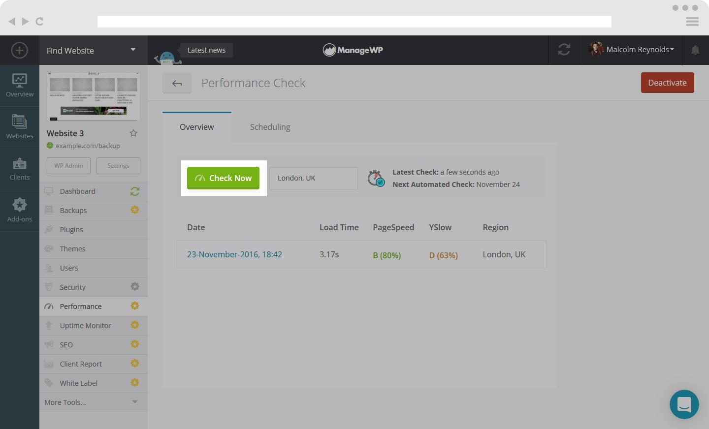 Website performance check