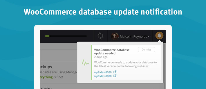 Woocommerce database update
