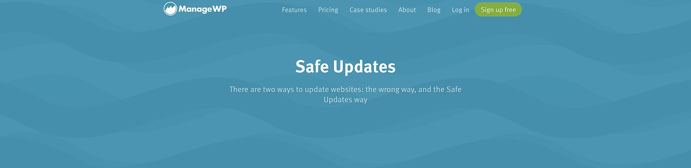 Safe Updates