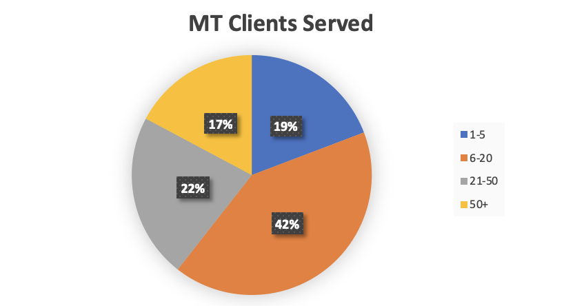 A pie chart showing how many clients those offering multiple tiers of website maintenance service have.