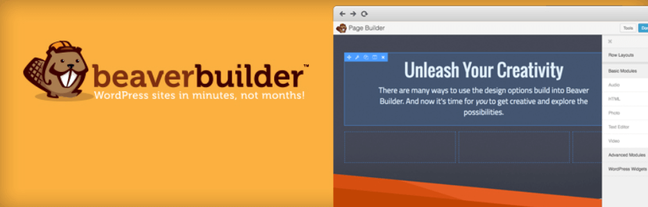 The Beaver Builder WordPress plugin.
