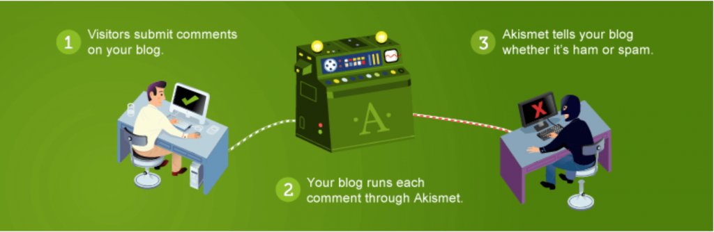 The Akismet anti-spam plugin.