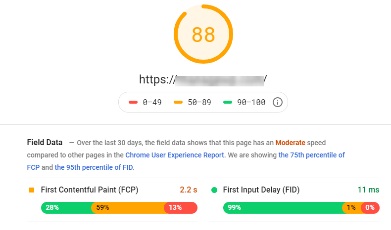 The results page of the Google PageSpeed Insights tool.