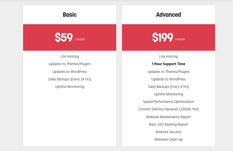 An example of a website that offers WordPress maintenance packages.