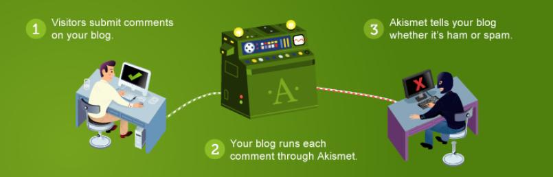 The Akismet WordPress plugin.