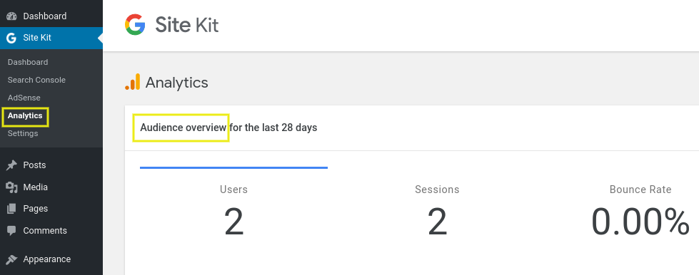 The Analytics audience overview section on the Google Site Kit plugin.