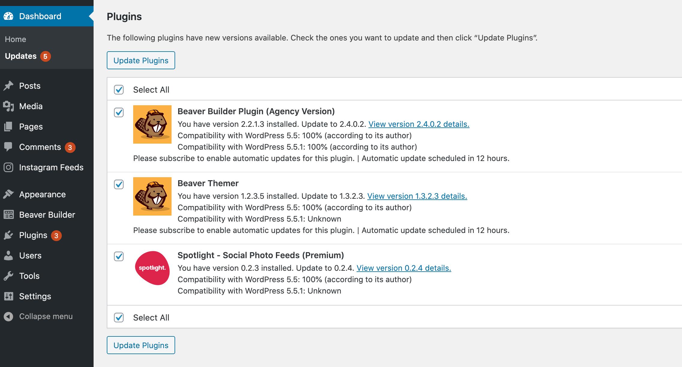 The WordPress plugins Update screen inside the WordPress dashboard.